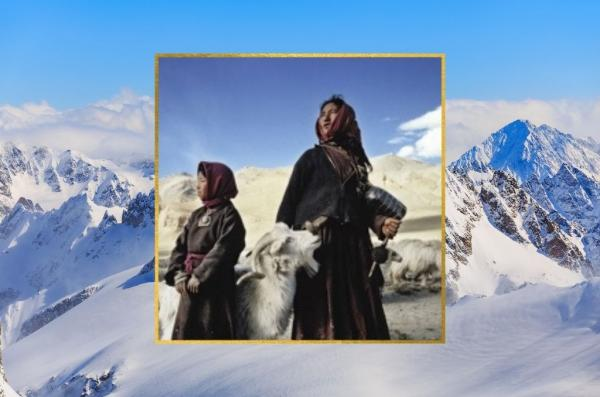 The Trail of India's Cashmere Goat Men